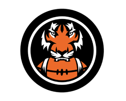 NFL fans don't like the Bengals' logo. Here's how it can be improved ...