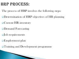 human resource planing development programme 10 iuml129plusmn human resource planning analyzes an organization s