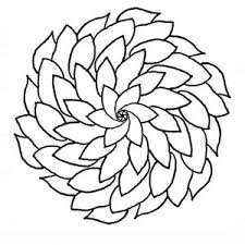 Small Picture Pretty Flowers Coloring Pages FunyColoring