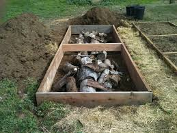Small Picture Wood For Raised Garden Gardening Ideas