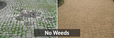 Image result for polymeric sand