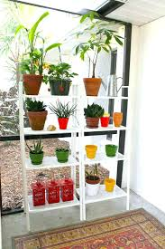 glass window shelves for plants plant stand