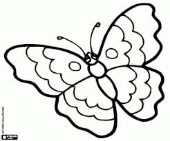 Disegni Di Farfalle Da Colorare E Stampare