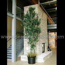 decorative plants for office. Decorative Plants For Office Using Artificial Aspen \u0026 Birch Trees!! Http:/ O