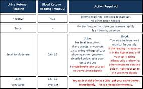 Fbs Normal Range Chart Normal Blood Sugar Level Chart Without Diabetes Diabetes