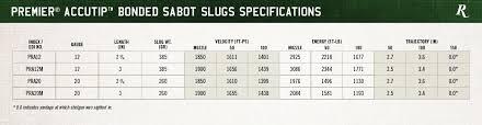 78 Unfolded Shotgun Slug Ballistics Chart