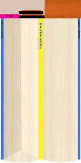Templates And Models For Cricket 07 - Cricket 07 General Discussion ...