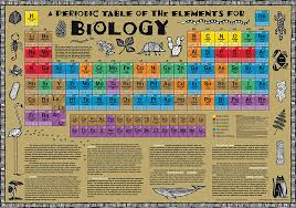 Biology Periodic Table Poster