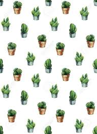 Cacti Watercolor. Cactus Illustration ...