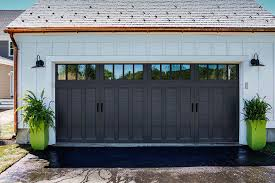 D Color Blast Garage Door Paint System ColorBlast Coachman  Black