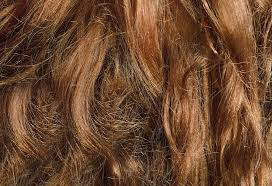 Top 12 Home Remedies for Frizzy Hair