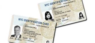 Data House Id Malliotakis Politics Would Hand The Over To White Csny Immigrants'