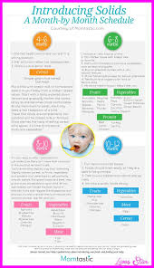 Starting Baby On Solids Chart Nice The Introduction Of Solids Baby Solid Food Baby