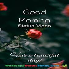 good morning status videos