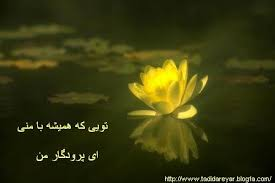 Image result for خدایا ممنون