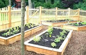 kitchen garden ideas kitchen garden design home vegetable garden plans home vegetable garden design glamorous vegetable