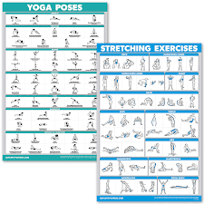 Yoga Pose Chart Poster Quickfit Yoga Poses And Stretching Exercise Poster Set Laminated 2 Chart Set Yoga Positions Stretching Workouts