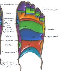 Top Of Foot Reflex Chart Top Of Foot Reflexology Reflexology Foot Reflexology