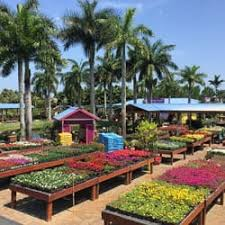 flamingo gardens nursery. Wonderful Nursery Plants Throughout Flamingo Gardens Nursery S