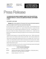 best press release template unique band press release template fy41 documentaries for change