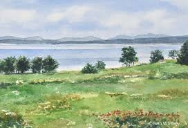 newbury neck wildflowers is an original watercolor painting featuring a field of flowers leading you down to morgan bay and acadia beyond