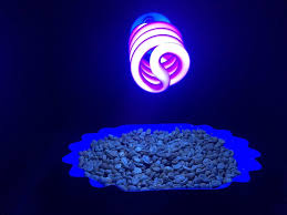 Black Light Vs Ultraviolet Light Using Uv Light For Quality Control In Coffee Roasting