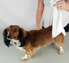 towel sling in use