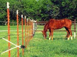electric fence for garden. Using Electric Fencing In Your Garden Fence For