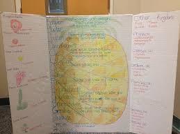 Linnaeus Pineapple Classification Chart Challenges
