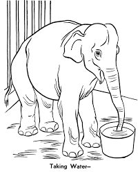 Small Picture Zoo Animal Coloring Pages Zoo Elephant Coloring Page and Kids