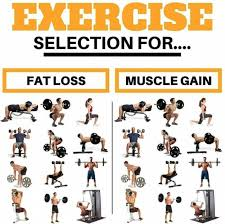 exercise selection for fat losuscle gain best fit tips