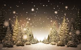 Tree Christmas Wallpaper Android Christmas Trees In Snow