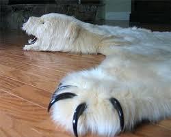 bear rug fake polar with head
