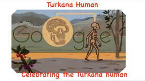 Complete Early Human Skeleton Turkana ...