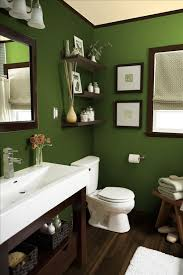 brown and green bathroom accessories. Green Bathroom ,green Rugs Bath Towels Decor Brown And Accessories .