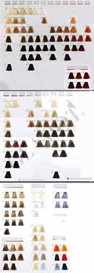 Goldwell Demi Permanent Hair Color Chart Goldwell Colorance Demi Color Instructions