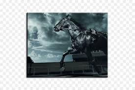 black arabian horse wallpaper. Interesting Black Friesian Horse Desktop Wallpaper Arabian Black Equestrian  Others And Horse