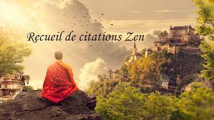 Citations Zen Thibault Didelot