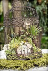Best 25+ Birdcage centerpiece wedding ideas on Pinterest | Bird cage  centerpiece, Birdcage wedding decor and Wedding bird cages
