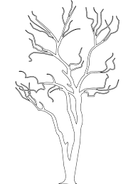 Small Picture Best Birch Tree Branches Coloring Pages Photos Coloring Page