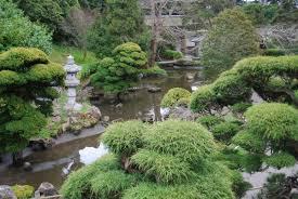 Plantes Grimpantes Jardin Japonais