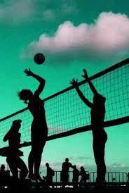 green beach volleyball art