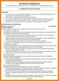 Resume Summary Statement Stunning Resume Summary Statements Kenicandlecomfortzone