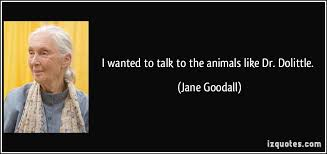 Jane Goodall Quotes Delectable I Wanted To Talk To The Animals Like Dr Dolittle