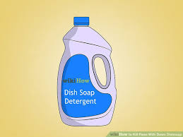 image titled kill fleas with dawn dishsoap step 1