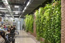 indoor gardening. Citygarden Company Head Diana Kemel And Her Team Want To Bring Gardens Indoors, But In Growing Their Business, They\u0027re Also Helping Grow An Industry. Indoor Gardening
