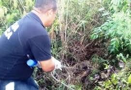 SANTA QUITÉRIA - Cadáver é encontrado em matagal neste fim de semana