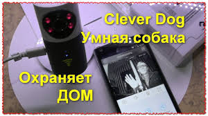 <b>Clever</b> Dog Умная собака WiFi Smart <b>IP камера</b>. Охраняет дом и ...
