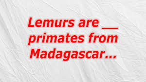 Small Picture Lemurs are primates from Madagascar Crossword CodyCross