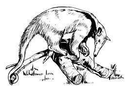 Small Picture Coloring page Anteater img 18578
